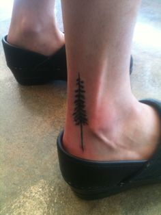 redwood tattoo (with roots)