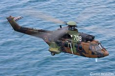 AS532 Cougar helicopter of the army of Bulgaria, Photo : Anton BALAKCHIEV