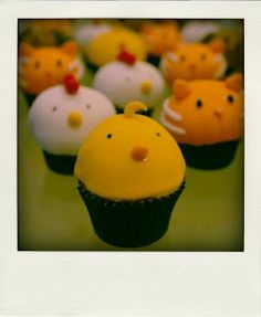 RSPCA cupcake day...