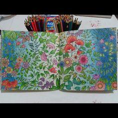 Mais uma pagina dupla do #JardimSecreto terminada! E eu estou orgulhosa do resultado. ♡♥♡♥ #JardimSecreto #johannabasford #secretgarden #florestaencantada #enchantedforest #johanna_basford  #jardimsecretoinspire #lapisdecor #pintar #colorir #amocores #colouredpencil #colouringbook #terapiadascores #flores #flowers #jardim #editorasextante #fabercastell #maped