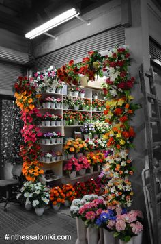 Small flower shop inside Bezesteni Market in the center of Thessaloniki. Tourist Info, Thessaloniki, Macedonia, Small Flowers, Greece, Floral Wreath, Destinations, City, Shop