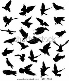 dove silhouette tattoo | love the one on the second row, first dove.