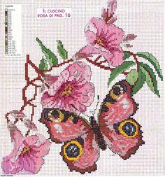 Gallery.ru / Фото #14 - бабочки - anapa-mama
