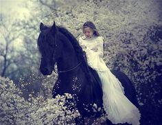 fairytale horse and girl
