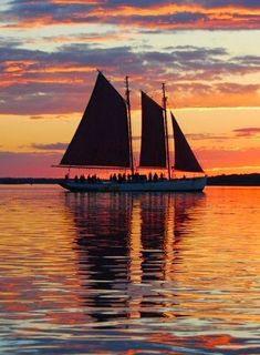 Skonert limpa bakades på Maine skonerten Sylvina W. Beal. Skonerten sjösattes 1911 och ombyggdes för passagerartrafik 1981. En passagerar... Steamer, Sailing Ships, Maine, Boat, Ocean, Sunset, Water, Spanish, Painting