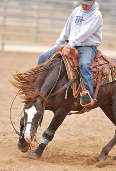 Reining Trainer Andrea Fappani, I would loveeee to ride for them or one of their horses.