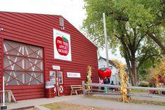 Jacobson's Pine Tree Apple Orchard. White Bear Lake, MN