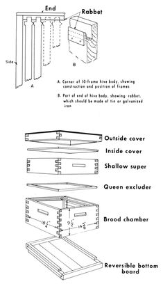 Figure 1. - Plans and dimensions for Langstroth 10-frame beehive.