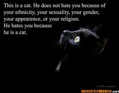 Bahahahahaha   And his meows are curse words because he's a Jersey cat.    @Stephanie Close Millner
