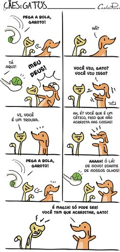 Cães e gatos – Você tem que acreditar! Funny Images, My Images, Funny Pictures, Like Animals, Animals And Pets, Nerd, Dachshund Love, I Love Cats, Cat Lovers