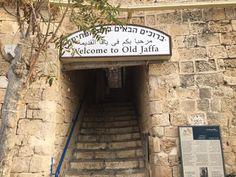 Exploring Tel Aviv In Israel | The Tiny Taster