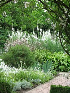 Sissinghurst's white garden. why white you aksed? in order to enjoy the view of flowers even late into the evenings