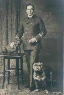 Victorian Bulldog ... Info on origin, appearance, character, temperment, etc.