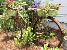 recycled garden bike, gardening, repurposing upcycling, rusty old garden bike Rusty Garden, Recycled Garden, Garden Junk, Abc Garden, Garden Whimsy, Garden Sheds, Garden Crafts, Old Bicycle, Old Bikes
