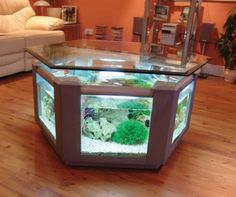Coffee Table Aquarium...great for basement den/game room.
