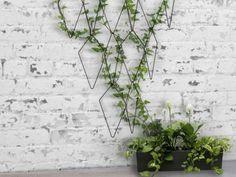 Les idées les plus simples sont souvent les meilleures. En pleine tendance Urban Jungle qui remet les plantes vertes à l'honneur dans nos intérieurs, le jeun