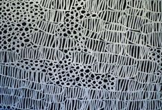 Painting black and white  Minnnie Pwerle/Aboriginal Art