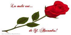 La multi ani... de Sf. Alexandru! Messages, Rose, Flowers, Plants, Pink, Plant, Roses, Text Posts