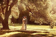 Лучшие свадебные снимки 2014 года от фотографов из каталога The-wedding.ru