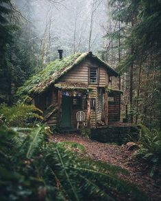 Tag who you'd stay with 🏡 Surrounded by nature in this enchanting cottage 🍃 Olympic National Park, Washington, U. Cottage In The Woods, Cabins In The Woods, House In The Woods, Forest House, Forest Cottage, Forest Cabin, Cozy Cottage, Cabins And Cottages, Log Cabins