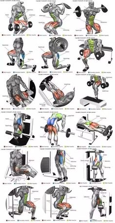 Post with 3040 votes and 126866 views. Shared by Full Body Workout