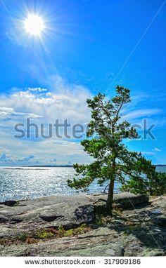 Arkistovalokuvat, rojaltittomat arkistokuvat ja -vektorikuvat - Shutterstock