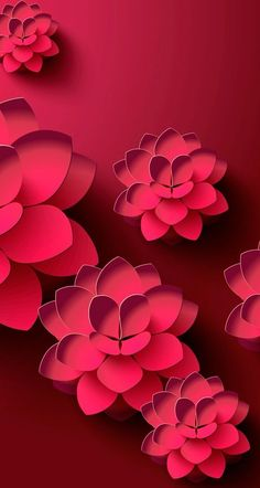 Wallpapers flowers