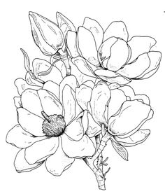 frantic stamper cling mounted rubber stamp magnolia