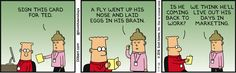 Carol: Sign this card for Ted. A fly went up his nose and laid eggs in his brain. Dilbert: Is he coming back to work? Carol: We think he'll live out his…