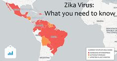 Zika is spread mostly by the bite of an infected Aedes species mosquito. Zika can be passed from a pregnant woman to her fetus. Infection during pregnancy can cause certain birth defects.