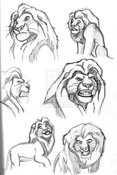 Mufasa---GREAT SKETCHES!