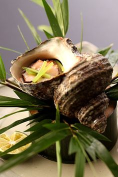 """http://otozure.jp/ https://www.facebook.com/otozure / Japan / Ryokan / Kaiseki / As guest's, you will be fortunate enough to have three delicious restaurant choices- Unyu, traditional Japanese """"Kaiseki"""" (multi-course), Zuiun for French food and Choshu where the art of preparing Teppanyaki in front of the diners adds a touch of excitement to one's dining experience."""