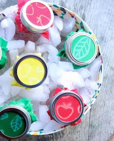 DIY Picnic Drinks. Fruit Infused Water Jars for Summer Picnics. Clorox bleach pen DIY.