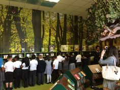 Students at Southmead being shown their brand new enchanted forest school library space. Southmead Primary School - Wimbledon, London. www.rapinteriors.co.uk