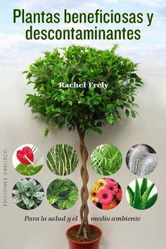 jardines peque os ideas brillantes para espacios reducidos