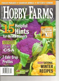 growing sweet potatoes - from a commercial standpoint, but there is some good info here Growing Sweet Potatoes, Nubian Goat, Organic Beef, Winter Plants, Winter Food, Winter Tips, Hobby Farms, Small Farm, How To Make Cheese