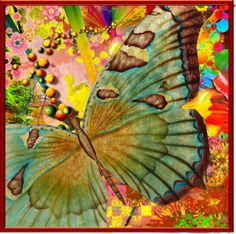 """vlinder"" by groen on Polyvore"