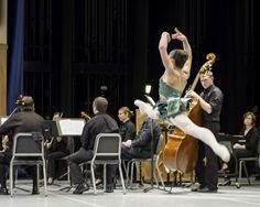 Carnival of the Animals performed by the Delaware County Symphony and International Ballet Classique, April 2013.