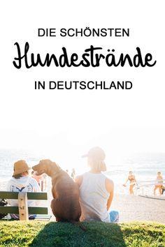 Hier findest du die schönsten Hundestrände für Deinen nächsten Urlaub mit Hund! Mehr unter: https://www.landreise.de/urlaub-mit-hund/hundestraende/
