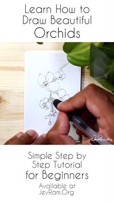 Cherry Blossom Drawing Tutorial for Your Bullet Journal Learning to draw flowers is a great way to d Pencil Art Drawings, Art Drawings Sketches, Easy Drawings, Orchid Drawing, Floral Drawing, Drawing Flowers, Drawing Lessons, Drawing Tips, Drawing Journal