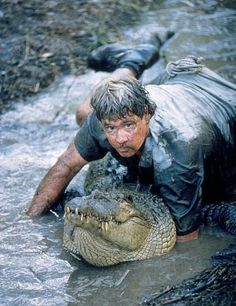 Miss the crikey guy, love the monster Hunter reference. Steve Irwin Day, Terri Irwin, Irwin Family, Crocodile Hunter, Creature Feature, Humor, Picture Photo, Wildlife, Creatures
