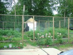 chickens garden   Here it is closer up. You can see the nesting boxes, with lid, on the ...
