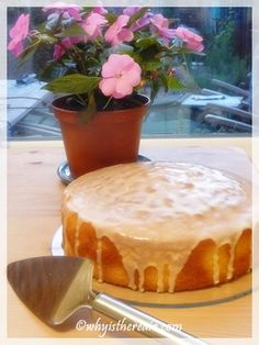 """Moist, orangey and buttery, this Thermomix recipe for Sicilian Orange Cake is based on one appearing in Rick Stein's """"Mediterranean Escapes."""" Makes one thick cake that serves Orange Recipes Thermomix, Thermomix Desserts, Yummy Treats, Delicious Desserts, Sweet Treats, Rick Stein, Brownies, Berry, Savoury Baking"""