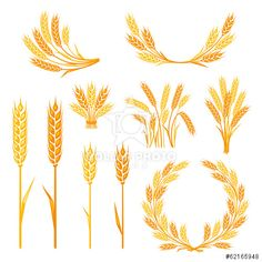 Find Cereal Collection Elements Design stock images in HD and millions of other royalty-free stock photos, illustrations and vectors in the Shutterstock collection. Wheat Drawing, Farmer Painting, Royalty Free Images, Royalty Free Stock Photos, Première Communion, Coffee Shop Design, Wreath Watercolor, Home Logo, Logo Inspiration