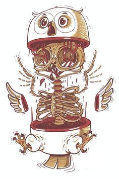 Anatomy of an Owl