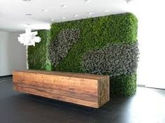 Image result for moss wall