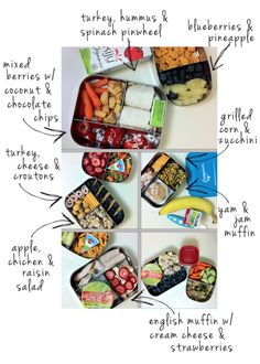 Harvesting Kale: Toddler Lunches: Week 4