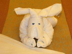 Love these little Carnival towel animals! Carnival Liberty Cruise, Towel Animals, Dinosaur Stuffed Animal