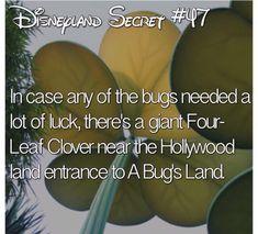 please tell me you guys have found it? Disneyland Secrets, Disney Secrets, Disney Tips, Disney Magic, Disney Parks, Disney Land Facts, Funny Disney Facts, Disney Day, Disney Stuff