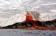 """. Blood Falls, Antártida A """"cachoeira de sangue"""", como também é conhecida popularmente, se destaca com o branco da geleira de Taylor. O líquido, que se dispersa na superfície do lago Bonney, tem essa cor devido à alta quantidade de ferro que as águas salgadas possuem. Além disso, foram descobertas 17 espécies de bactérias no local tão desconhecidas que não têm nem nome científico e só existem lá."""